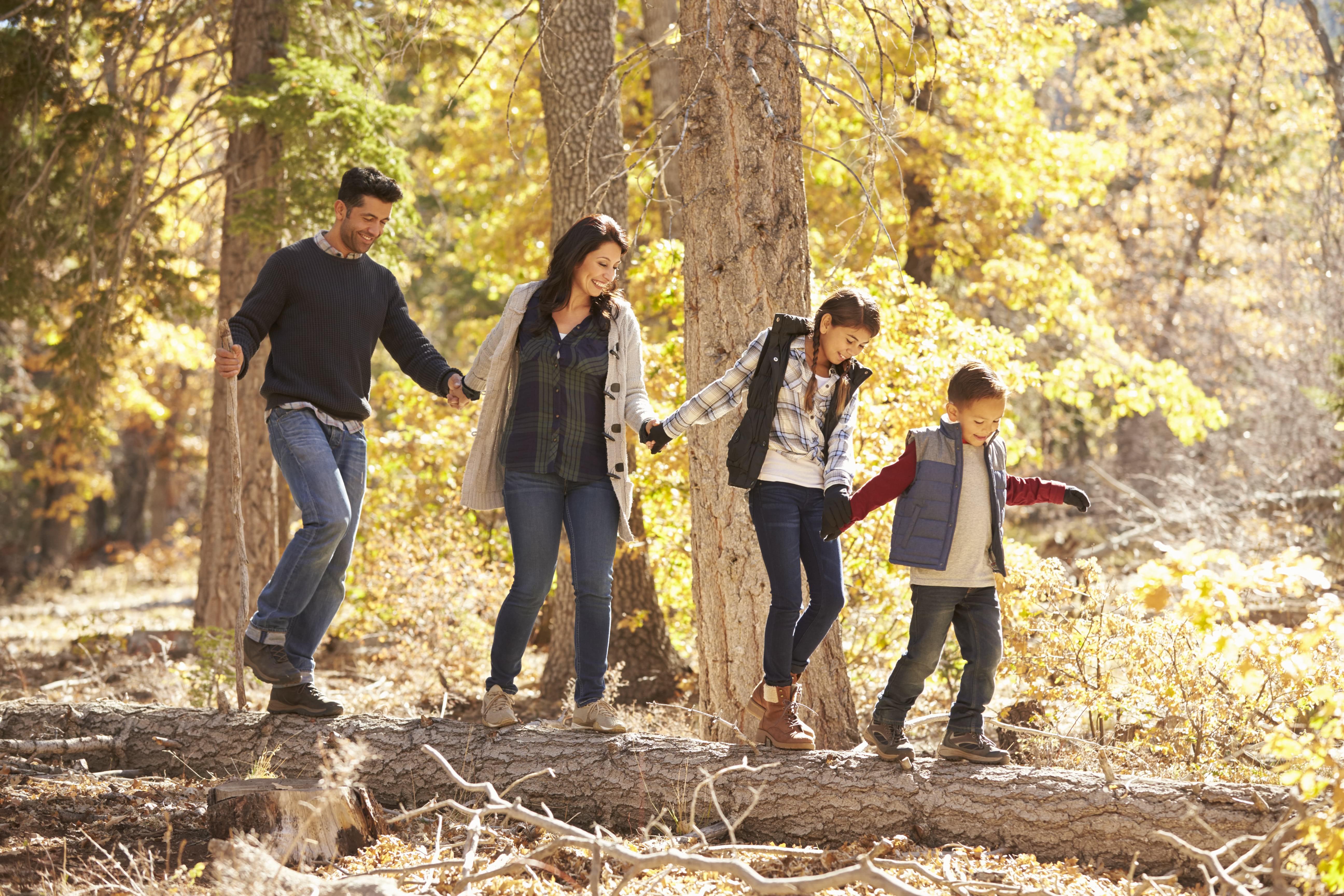 Wandelen met de familie door de groene omgeving van Villapark Ehzerburg
